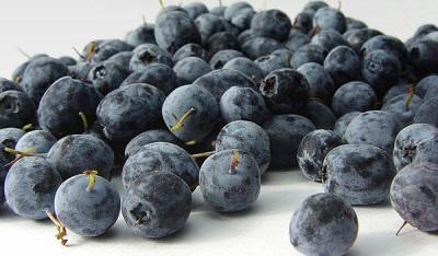 18_7_acai-berries.jpg