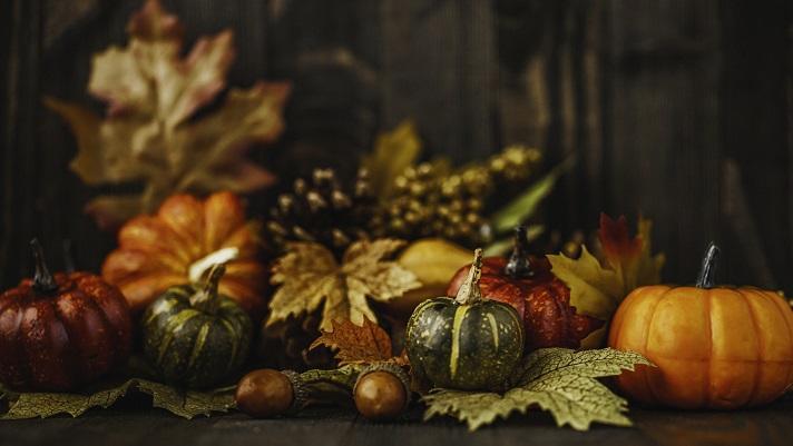 かぼちゃを食べよう♪ おかずからスイーツまで楽しいレシピをご紹介☆ハロウィンにも! ~サラダカフェ