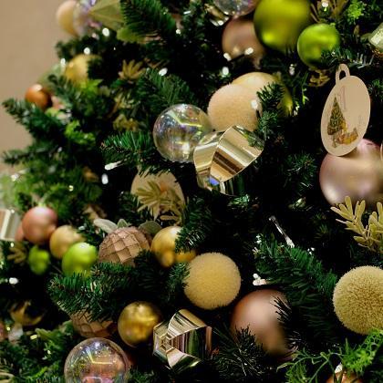 平成最後のクリスマス、一人暮らしの男女はどう過ごす? 平均予算や欲しいプレゼントなど ~レオパレス21調べ